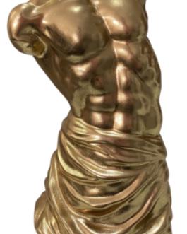 Dorso Nu de Homem Dourado